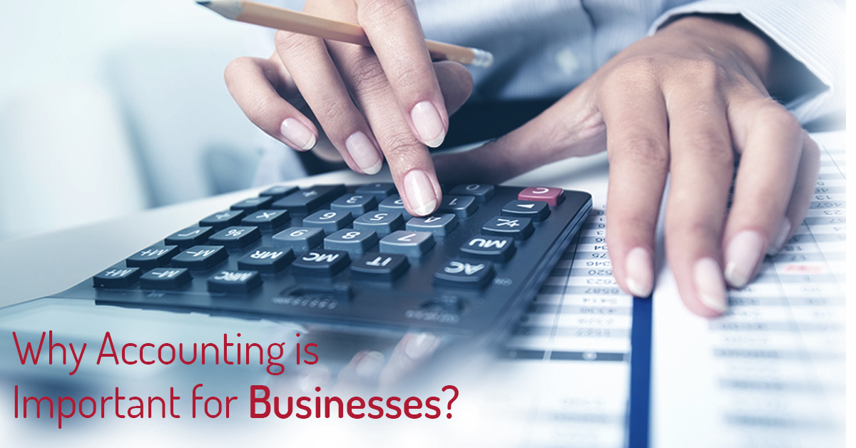 Why Accounting is important